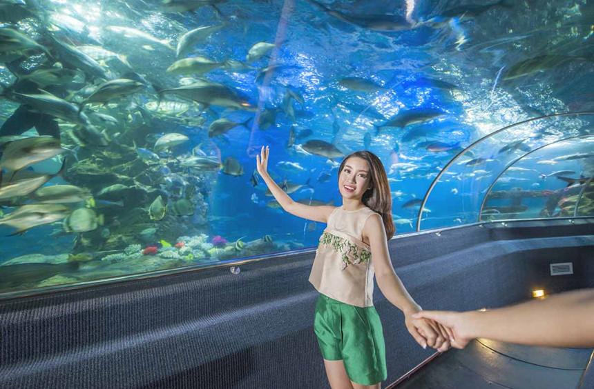 Den Nha Trang check-in doi van hoa, vinh phao noi 4.200 m2 hinh anh 7