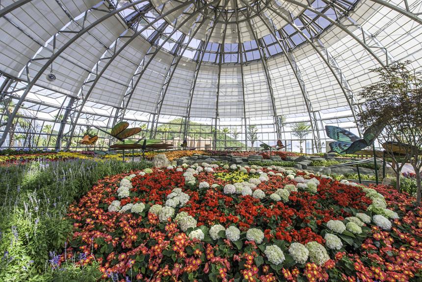 Den Nha Trang check-in doi van hoa, vinh phao noi 4.200 m2 hinh anh 1