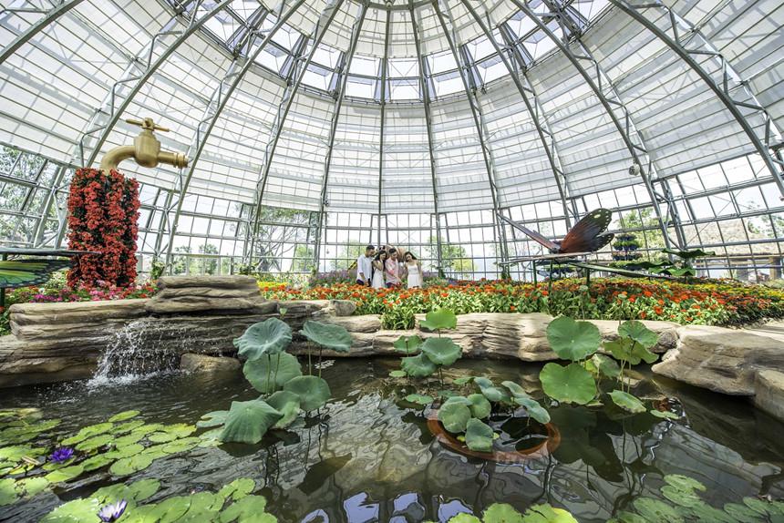 Den Nha Trang check-in doi van hoa, vinh phao noi 4.200 m2 hinh anh 2